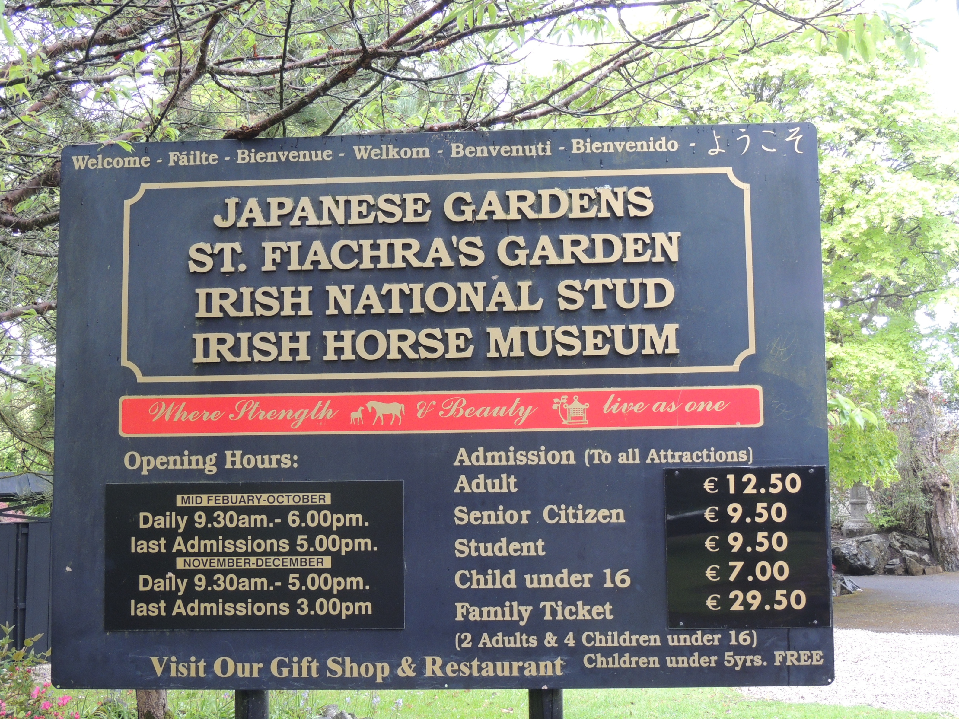 Irish National Stud: The Irish National Stud And Japanese Garden